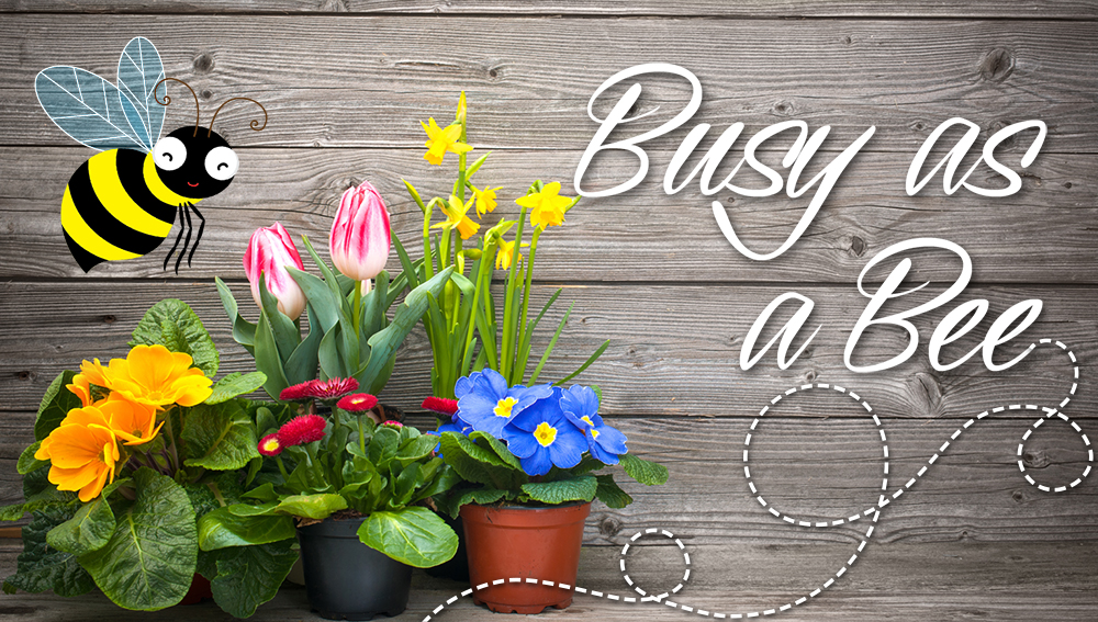 We're Busy as a Bee! May Gardening Tips