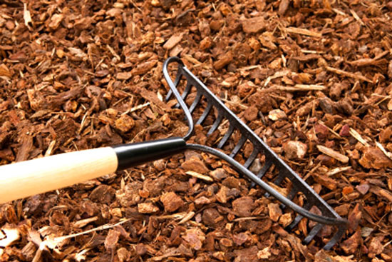Planting your Mulching